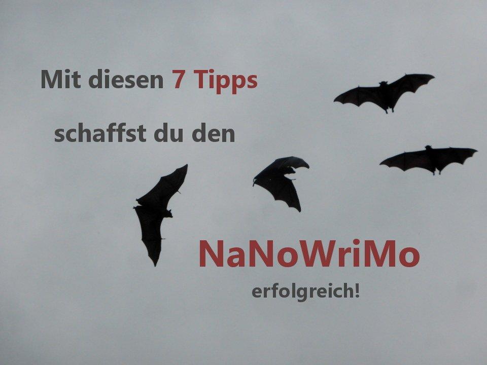 Fledermäuse . 7 Tipps den NaNoWriMo zu schaffen