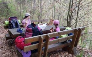 Mittagessen im Wald