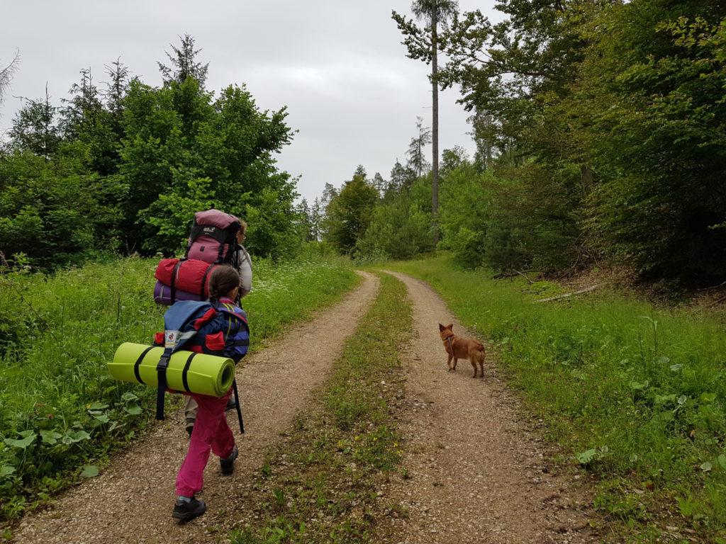 Schotterweg bei Ebrach mit Kind und Hund