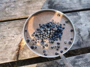 Müsli mit Heidelbeeren auf dem Sörmlandsleden